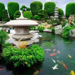 Đèn Đá Hồ Cá Koi Tiểu Cảnh