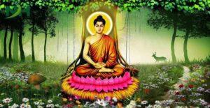 5 Câu Hỏi Thú Vị Về Đức Phật Thích Ca